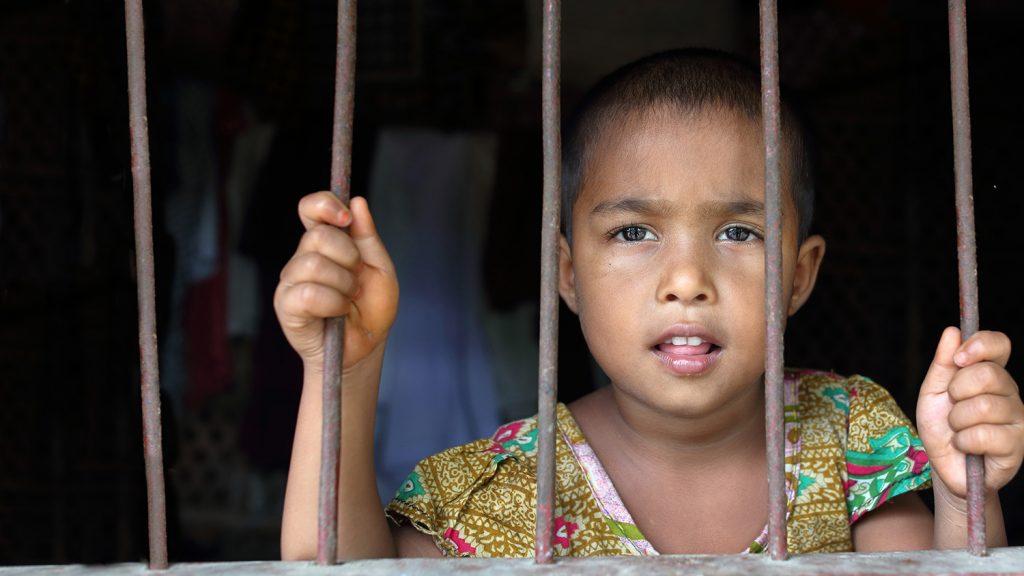 Aklima klamrar sig fast i ett av fönstrens rör i sitt hem.