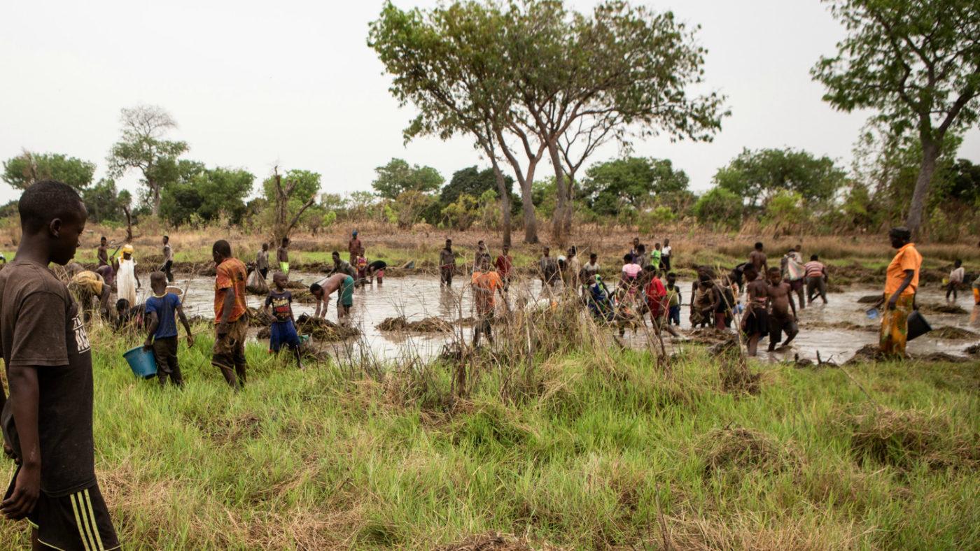 Flera människor står i vattnet och fiskar i Pru-floden i Ghana