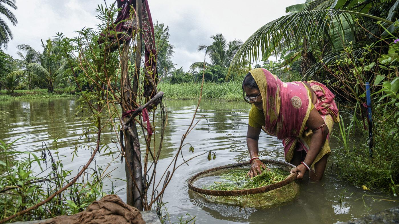 En kvinna fiskar i en flod.